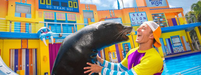 Image for Clyde and Seamore's Sea Lion High