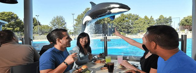 Image for Dine with Shamu
