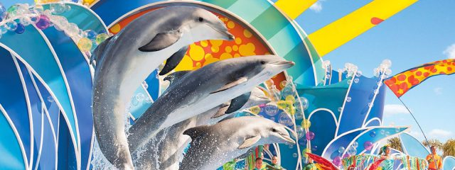 Image for Dolphin Days