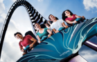 Five things you didn't know about SeaWorld thumbnail image