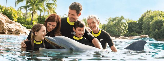Image for Dolphin Lagoon