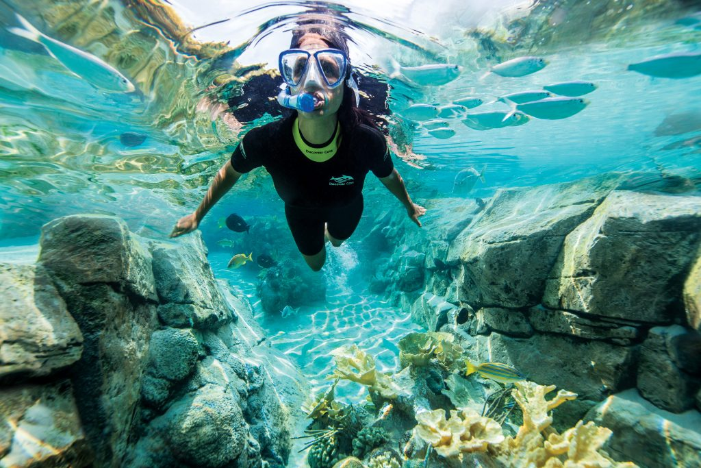 The Grand Reef - Discovery Cove