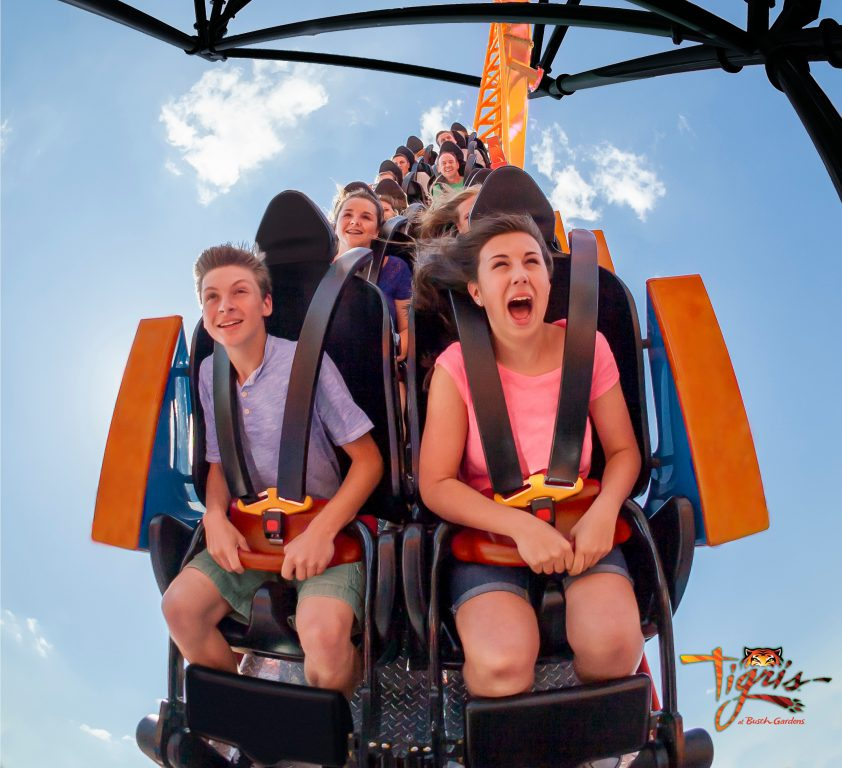 Busch Gardens announces new multi-launch thrill ride: Tigris