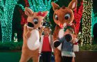 SeaWorld's Christmas Celebration Returns With More Lights Than Ever Before thumbnail image