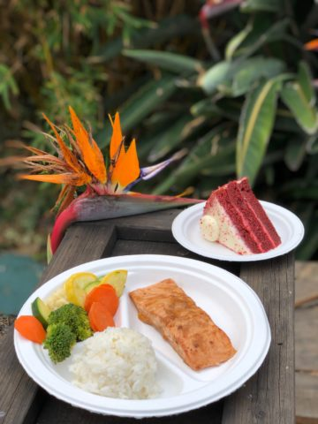 SeaWorld Parks Remove Polystyrene Foam Dinnerware Products from All 12 Theme Parks