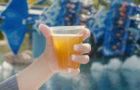 Free Beer is Back All Summer Long at SeaWorld thumbnail image