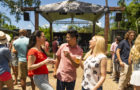Round Two Of Bier Fest Pours Out This Month At Busch Gardens Tampa Bay thumbnail image
